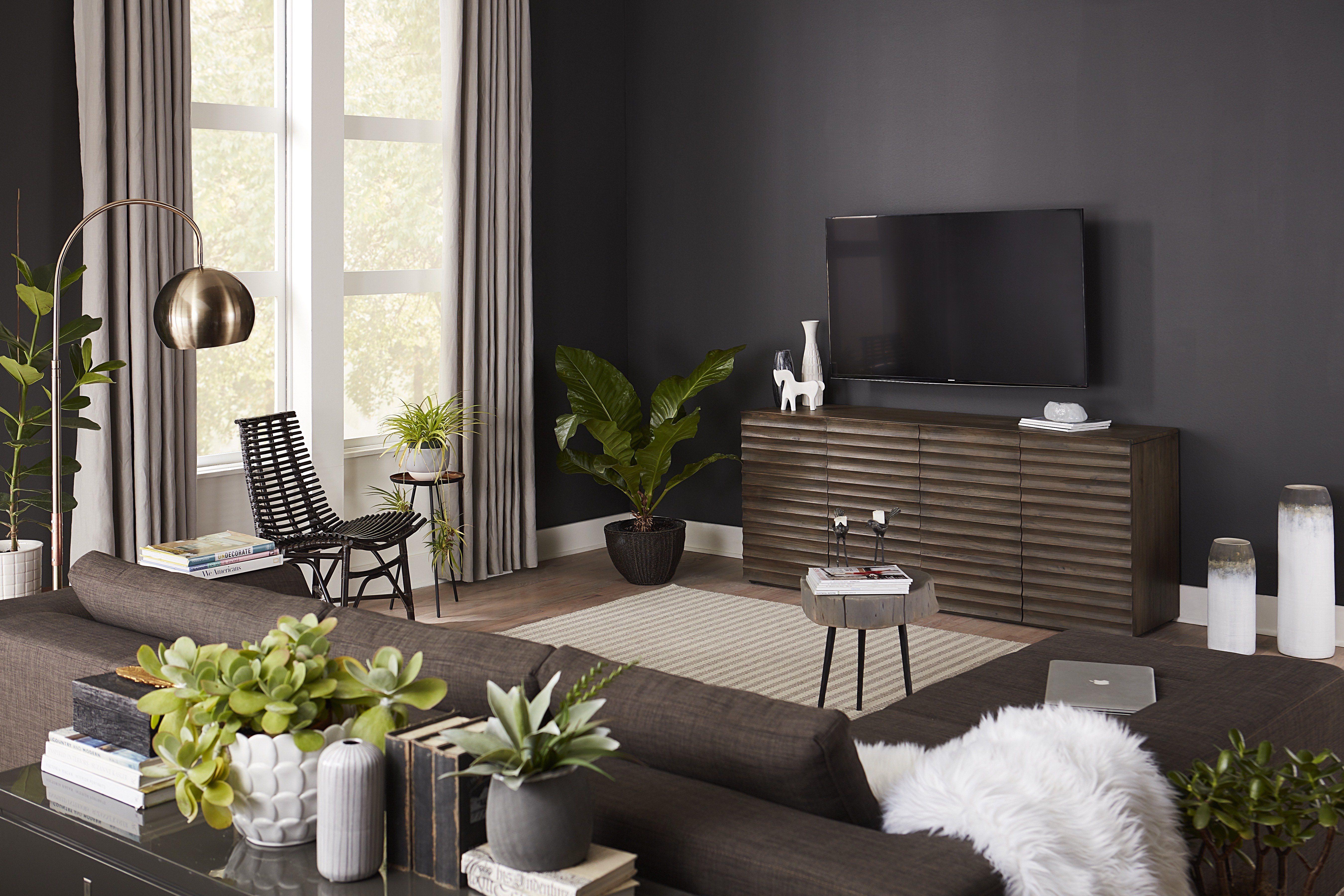 dark TV accent wall